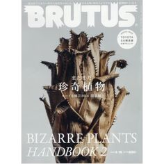 BRUTUS April 15 2016 Men's Lifestyle Magazine
