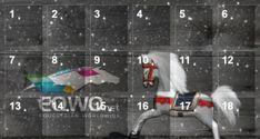 #Glücksmomente der EQWO Community im EQWO.net Adventkalender  #glücksmoment #adventkalender #pferdeliebe #pferd #pferdefotografie Advent, 18th, Calendar