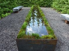 make out planter a long narrow pond??? Why not? Our great dane would have one…