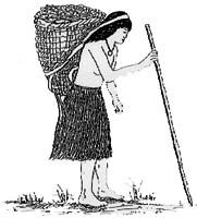 Ohlone Indian with an acorn gathering basket.