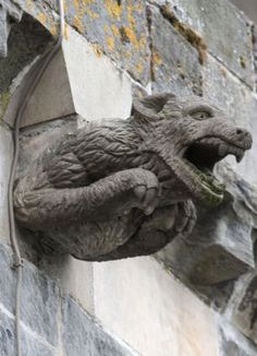 Fun: A stonemason from Edinburgh was recruited to design some gargoyles for the abbey- so I guess they aren't old.