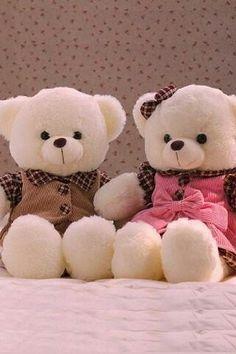 30 Best Bear Wallpaper Images Bear Wallpaper Bear Cute Teddy Bears