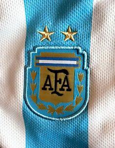 Palabras de Leo Messi agradeciendo el apoyo. Copa América Chile 2015.