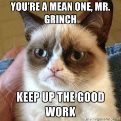 There hasn't been one grumpy cat meme yet that hasn't cracked me up.