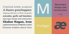 Frutiger® - Webfont & Desktop font « MyFonts