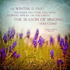 <3 Song of Solomon 2:11-12