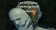 I am consciousness experiencing myself as human