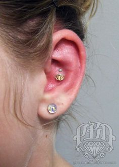 1000 images about piercings on pinterest conch for Tattoo shops in nashua nh