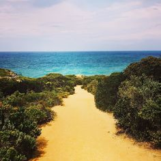 Auf vielen Wegen kannst du dich verlieren. Finden nur auf deinem... Else Pannek  #GOR #greatoceanroad #australia #travelgram #apollobay #instatravel #roadtrip #path #beach #backpacking #placetobe #placetostay #camping by jnnykay http://ift.tt/1LQi8GE