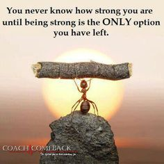 You never know how strong you are until being strong is your only option - quote