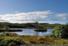 Fishing - Best Trout Lochs & Rivers in Wester Ross - Loch Bad a' Chrotha Trout Fishing, Fly Fishing, Wester Ross, North Coast 500, Brown Trout, Homeland, Rivers, West Coast, Water