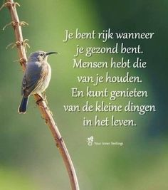 Je bent rijk wanneer je gezond bent … You are rich when you are healthy … Strong Quotes, True Quotes, Words Quotes, Sayings, Qoutes, Why Do People, Thing 1, Real Friends, Life Inspiration