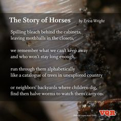 """The Story of Horses"" by Erica Wright #poem #poetry"