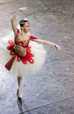 ЛЕНА НИКИФОРОВА - La Bayadere (act II) - Nikolai Krusser © Ballet beautie, sur les pointes ! Tutu Ballet, Ballerina Tutu, Ballerina Dancing, Bolshoi Ballet, Ballet Dancers, Tutu Costumes, Ballet Costumes, Carnival Costumes, Sleeping Beauty Ballet