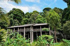 先住民族の村を訪ねた気分になれる ボルネオ島の本格的な文化村|今日の絶景 365日、ヴァーチャルな旅へ|CREA WEB(クレア ウェブ)