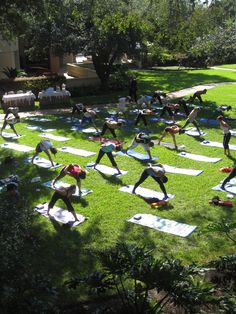 Practice your downward dog for a good cause on Oct. when Yoga on the Lawn returns to Four Seasons Hotel Austin. Park Landscape, Urban Landscape, Landscape Architecture, Landscape Design, Driveway Lighting, Outdoor Fitness Equipment, Park Playground, Wild Forest, Outdoor Yoga
