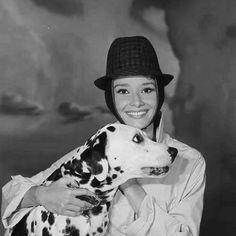 Audrey Hepburn repinned by StoneArtUSA.com ~ affordable custom pet memorials since 2001