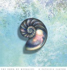 ...nautilus shell...