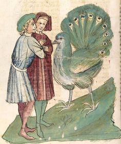 Konrad von Megenberg Das Buch der Natur — Hagenau - Werkstatt Diebold Lauber, um 1442-1448? Cod. Pal. germ. 300 Folio 155v