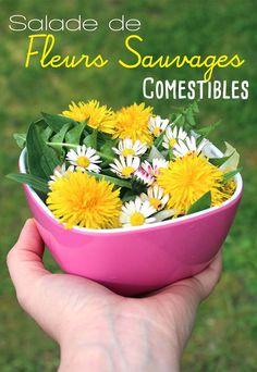 Salade de fleurs sauvages comestibles