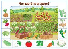 Играем до школы: Наглядный материал для детей Что растет в огороде