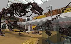 Dinosaur Hall at Natural History Museum of LA...http://www.traveldestinationinfo.com/dinosaur-hall-at-natural-history-museum-of-los-angeles/