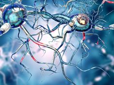 Key to Effective Parkinson's Treatment May Lie in Stem Cells, Researchers Say