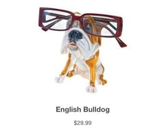 OptiPets from Paws N Claws Eyewear. Shop now: http://pawsnclawseyewear.com/pawsnclaws_accessories.html