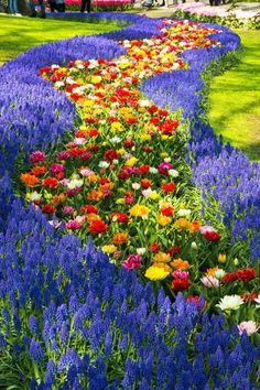 8 Flower Landscape Ideas For Your Garden – Garden Ideas 101 Most Beautiful Gardens, Beautiful Flowers Garden, Amazing Flowers, Amazing Gardens, Landscape Photography, Nature Photography, Tulips Garden, Flower Landscape, Landscape Design