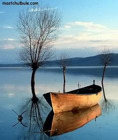 Evanbridge: Awakening inspiration - old row boat. Amazing Nature Photos, Cool Photos, Beautiful Pictures, Landscape Photography, Nature Photography, Boat Art, Old Boats, Small Boats, Boat Painting