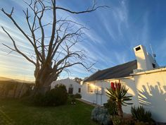 Accommodation at Bon Cap guestfarm and wedding venue, Robertson, South Africa South Africa, Wedding Venues, Cap, Wedding Reception Venues, Baseball Hat, Wedding Places, Wedding Locations