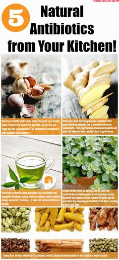 HERBS THAT ARE MORE EFFECTIVE IN FIGHTING VIRUSES THAN ANTIBIOTICS - Health Beauty ABC