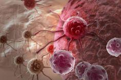 Hoe ontstaat kanker? | Wetenschap in Beeld