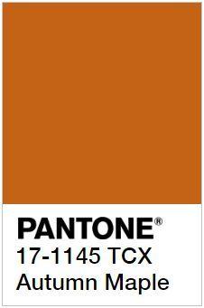 10 colores tendencia otoño-invierno 2017/2018 Pantone Colour Palettes, Orange Color Palettes, Colour Pallette, Pantone Color, Pale Dogwood, Color Patterns, Color Schemes, Pantone Orange, Rainbow Magic