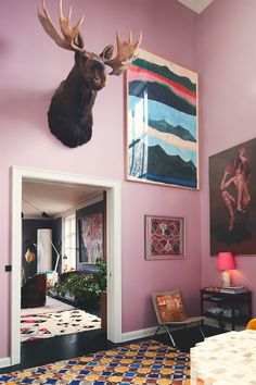 loving this contemporary eclectic space with those lilac lavender walls, and the black walls in the background, the boho moroccan rugs and the gallery wall complete with vintage paintings and moose head!