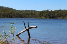 Big Dam, Mount Morgan: See 7 reviews, articles, and 2 photos of Big Dam, ranked No.1 on TripAdvisor among 6 attractions in Mount Morgan. 4 Photos, Trip Advisor, Attraction, Road Trip, Articles, Australia, Big, Australia Beach