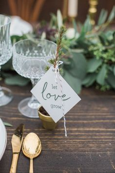Cozy Winter Wedding Styled Shoot - Looking for winter wedding inspiration? Check out this styled shoot full of pretty details: winter whites, lush greenery, champagne toasts, and a hint of sparkle. potted plant wedding favor Christmas {Conforti Photography LLC}