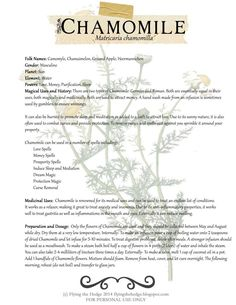 Chamomile magical and medicinal uses - Pinned by The Mystic's Emporium on Etsy