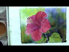 How To Paint the Red Hibiscus In Watercolor By Ross Barbera Part 3