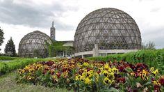 Gradina Botanica Jibou / Jibou Botanical Garden - part 1 Botanical Gardens, Romania, Taj Mahal, Tourism, Louvre, Culture, History, Building, Places