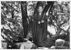 """""""Study Yourself"""" `Zen Mind, Beginner's Mind ~Shunryu Suzuki"""