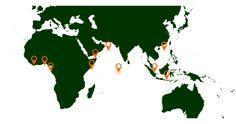 Conheça as 10 zonas mais afetadas pela pirataria marítima - http://www.jn.pt/multimedia/infografia970.aspx?content_id=2383833