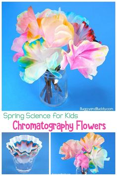 Chromatography Flowers: Science (STEAM) and Craft in one- Make these colorful flowers using coffee filters. crafts Spring Science Activity for Kids: Chromatography Flowers Steam Activities, Science Activities For Kids, Spring Activities, Science Experiments Kids, Science Fun, Science Centers, Summer Science, Science Chemistry, Science Education