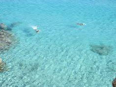 Coaquaddus Island of San pietro sardinia ph anna rita canavera