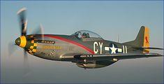 Gunfighter P-51