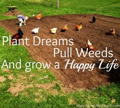 Plant dreams, pull weeds, and grow a happy life. Love this simple living gardening quote! Lots of simple living ideas over at www.HowWeeLearn.com
