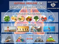 Natural healing for strong healthy lungs how many of these natural healing for strong healthy lungs how many of these lung healthy foods do you like brain and body health pinterest natural healing forumfinder Gallery