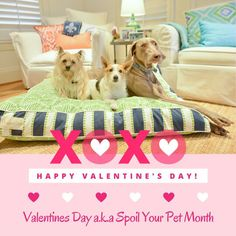 #happythursday Valentine's Day Discount!!! 15% OFF your purchase of $100 or more!  Code: 15OFF100