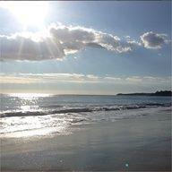 Always beach dreaming