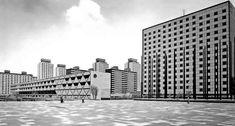 Ciudad Habitacional Nonoalco-Tlatelolco, México, DF 1964-1966   Arq. Mario Pani en colaboración con Luis Ramos  Foto. Armando Salas Portugal -  City Housing Nonoalco-Tlatelolco, Mexico City 1965-1966